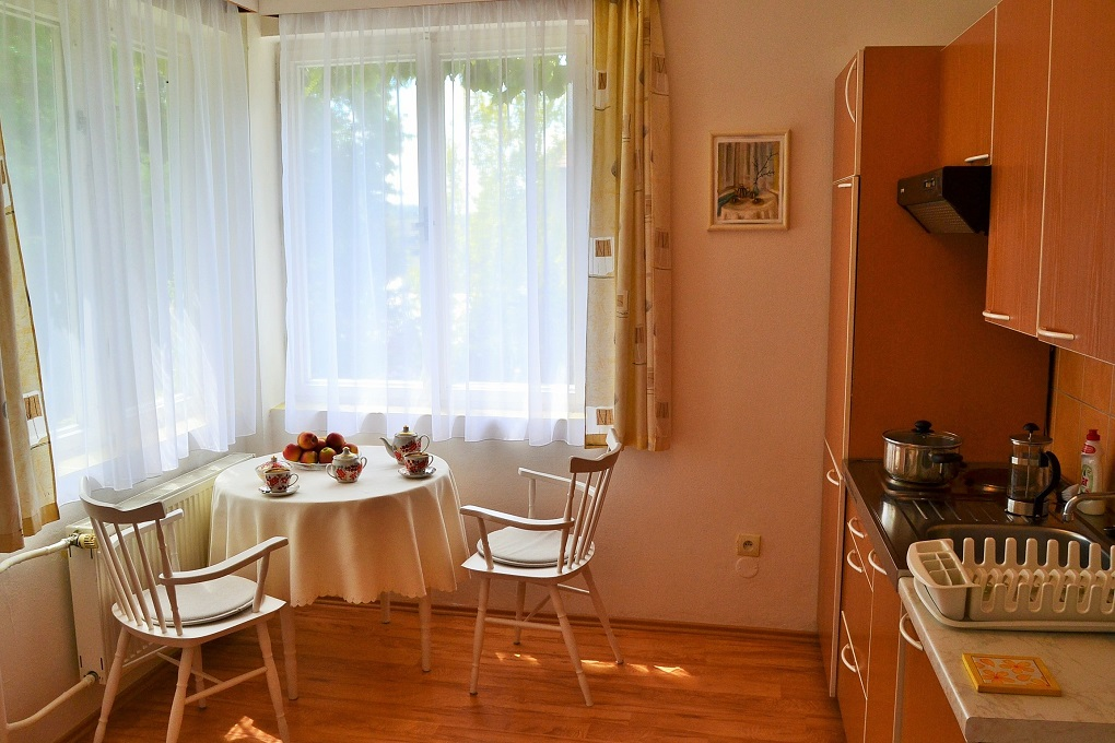 Kuchyň v dolním apartmánu